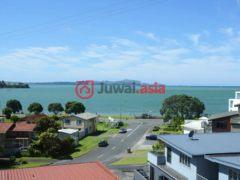 新西兰派希亚4卧4卫的房产