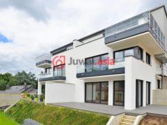 卢森堡4卧1卫的房产