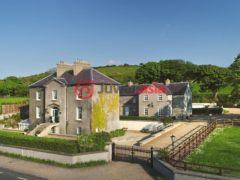 爱尔兰6卧7卫的房产