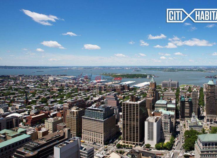 美国纽约州的新建房产,388 Bridge Street,编号35568645